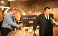 6 lý do dể uống rượu vang