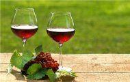 Những bài học vỡ lòng về rượu vang